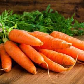 Carrot-Trick_web