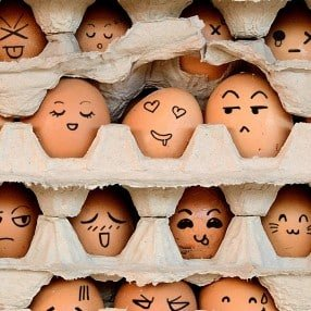 The-Great-Eggsercise_web