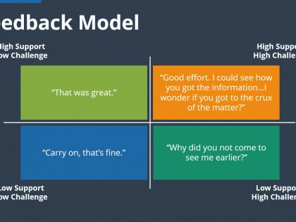 mentor feedback
