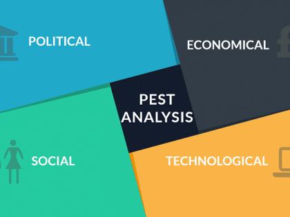 pest analysis critical
