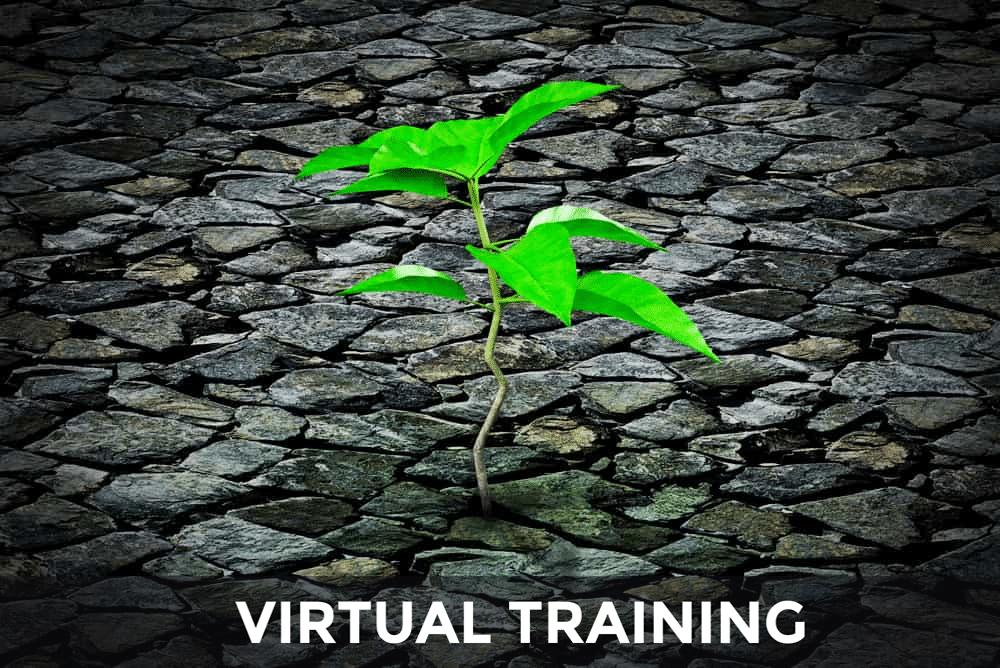 resilience virtual training