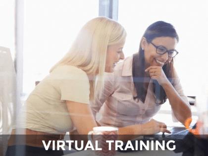 mentor virtual training