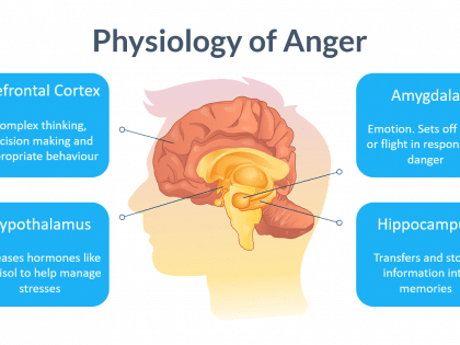 physiology anger