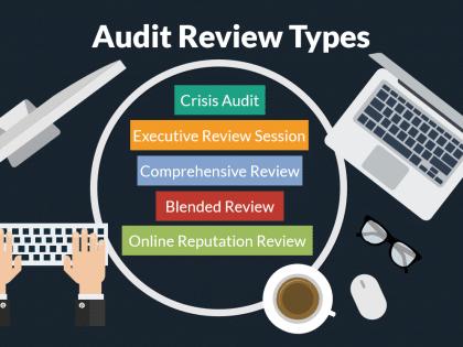 audit review crisis
